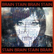 BrainStain_Icon