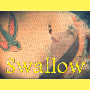 Swallow Iconsq